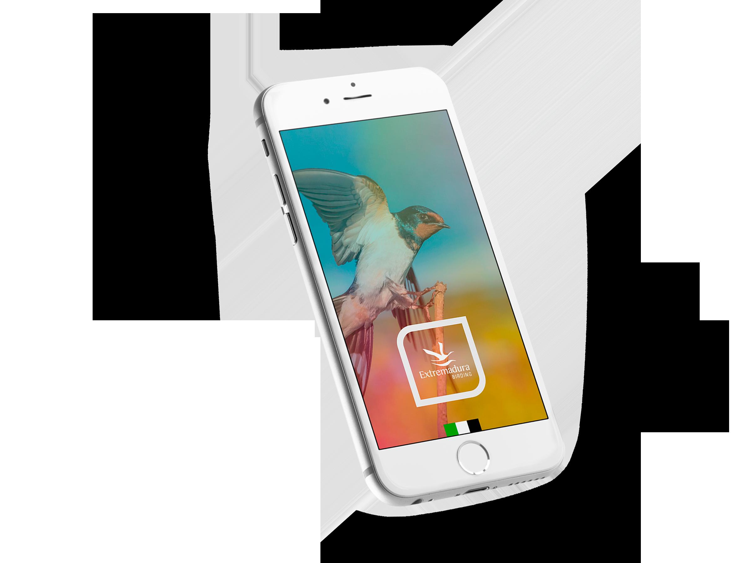 Extremadura Birding App - Synapse   Smart technologies