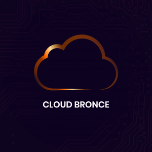 Cloud Bronce - Synapse | Smart technologies